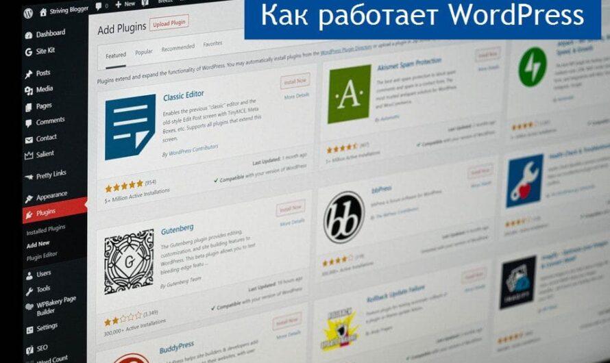 Пойми как работает WordPress и заработай на монетизации сайта